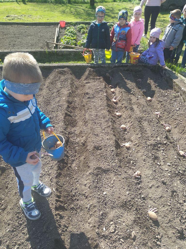 V Vrtcu Borovnica vrtnarimo