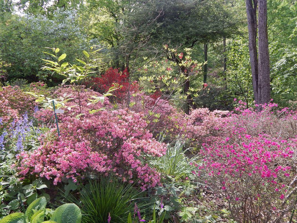 Obisk Botaničnega vrta Viatori