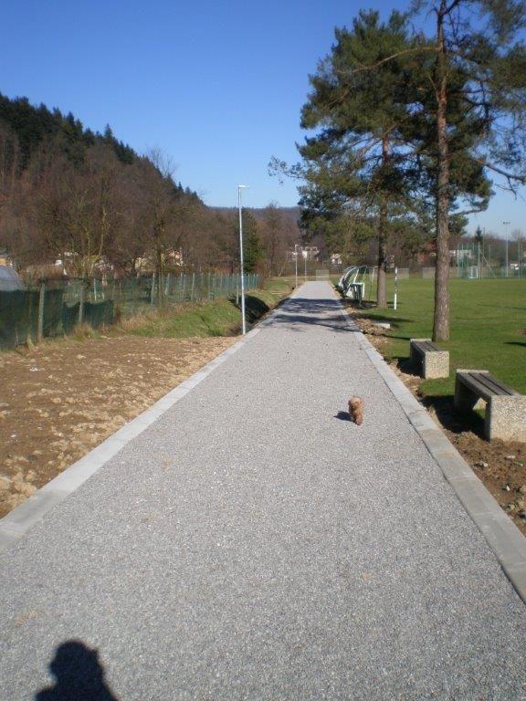 Po varni poti iz Športnega parka Log do Šolske ulice
