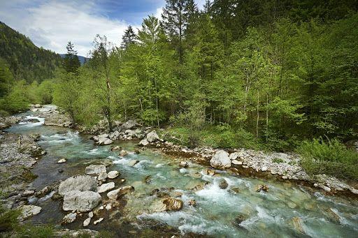 Kemijsko stanje površinskih voda v Sloveniji