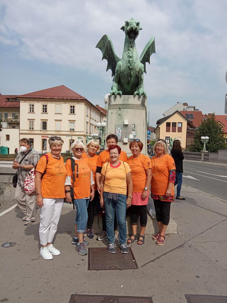 Zmajevke na Zmajskem mostu v Ljubljani