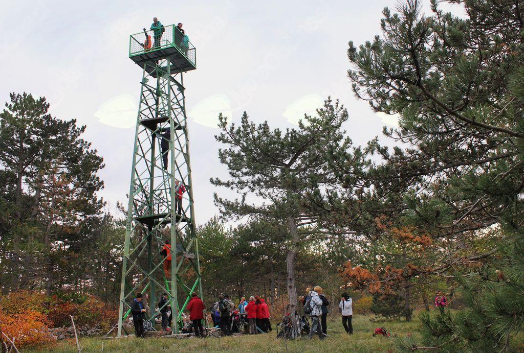 Le nekaj se nas je povzpelo na stolp na vrhu Lačne (foto Tatjana Rodošek)