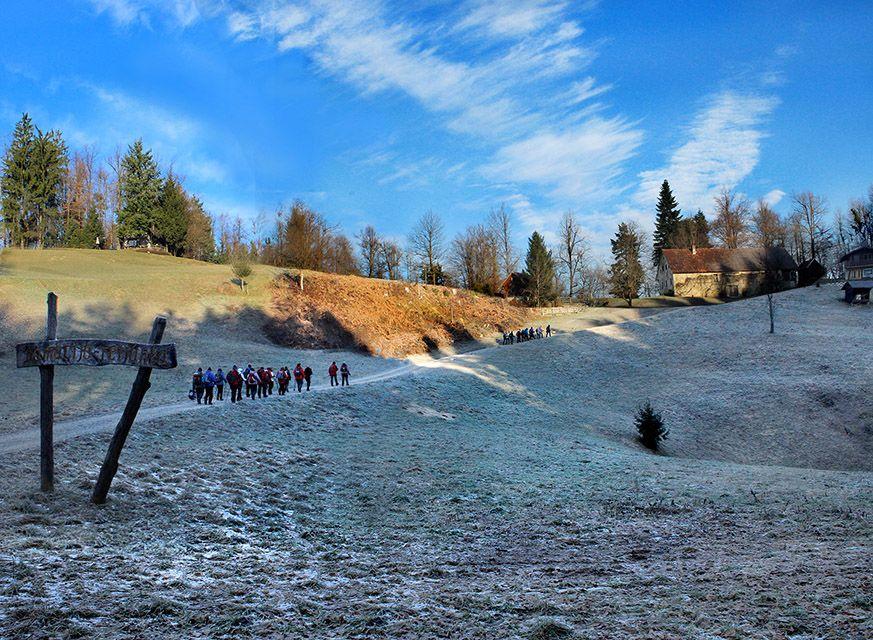 Travnike okoli kmetije Ferjanka je še prekrivala slana