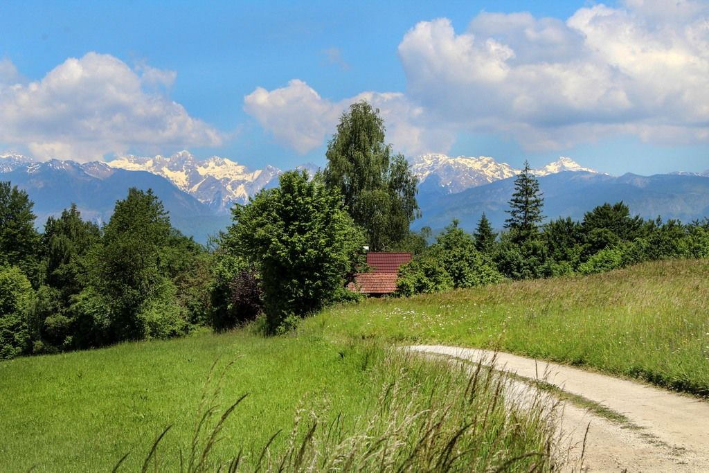 Kamniško-Savinjske Alpe od Kočne do Ojstrice…