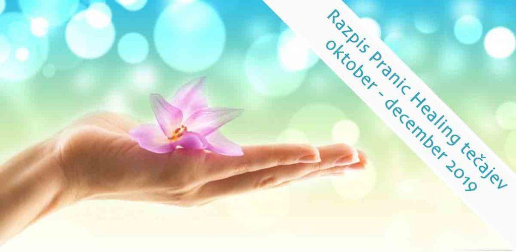 Osnovni Pranic Healing tečaj