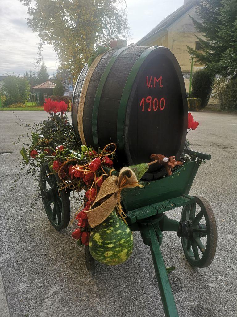 Simbol Vinogradniško-vinarskega društva Vojnik