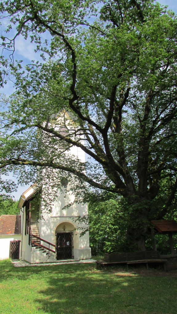 Podružna cerkev sv. Tomaža