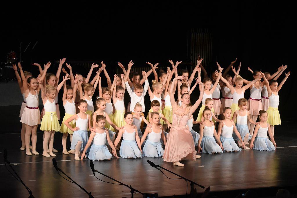 Na koncertu, kjer so za šolski sklad zbrali dva tisoč evrov, je nastopilo več kot tristo otrok v različnih zasedbah