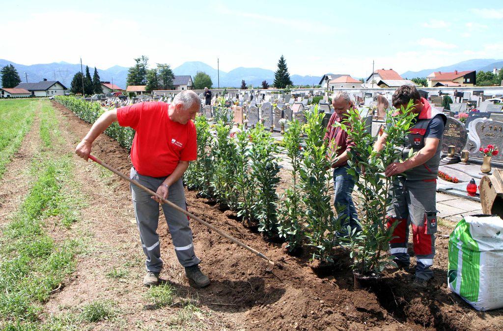 Obnova polzelskega pokopališča