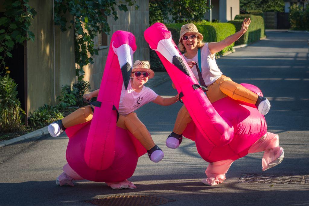 Par plesočih flamingov prinesel veselje in dobro voljo na Polzelo