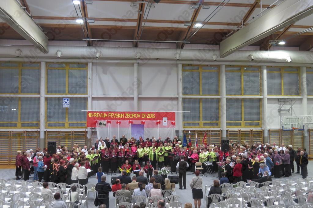 Skupna pesev vseh 21 zborov DI ZDIS