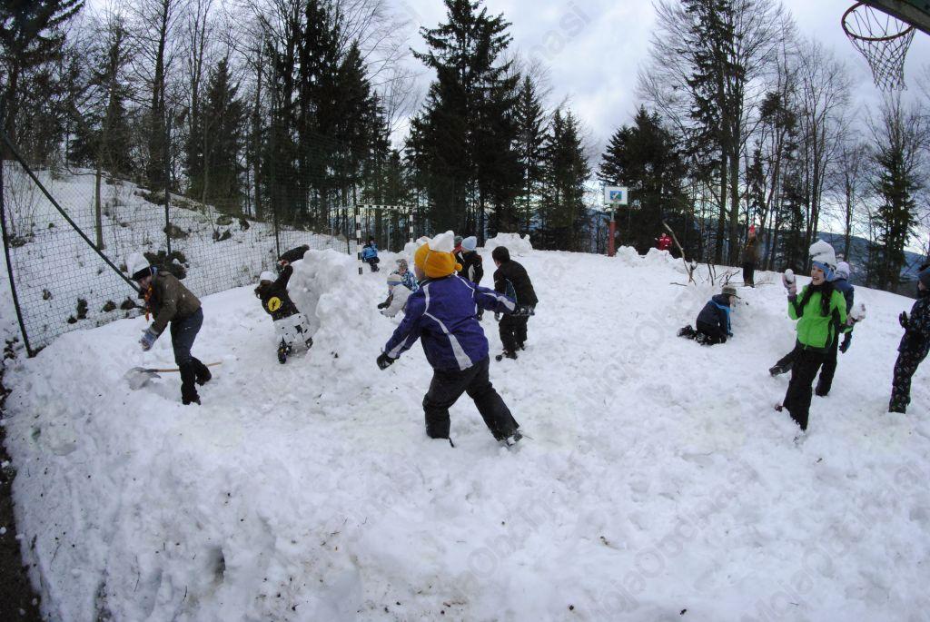 Radosti na snegu