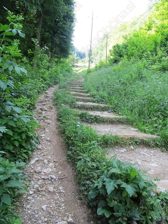 Kar 183 stopnic smo morali premagati do …