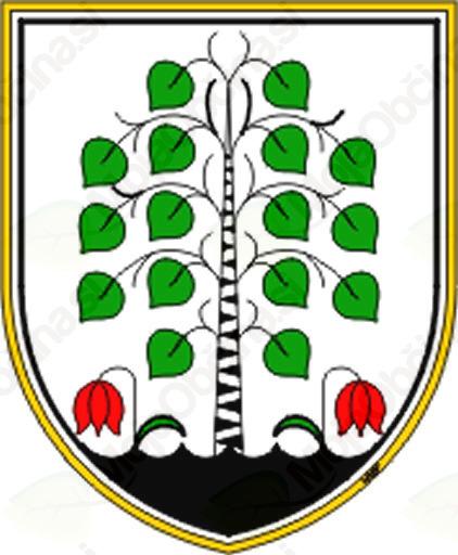 Neurje s točo v občini Brezovica - ocena škode