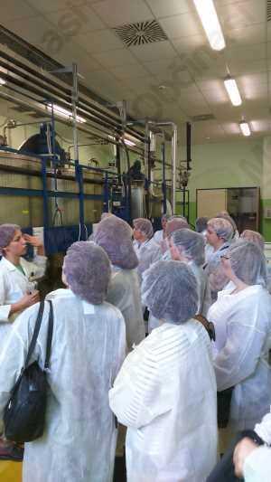 Frizerke iz Območne obrtno-podjetniške zbornice Radovljica na ekskurziji v Lendavi