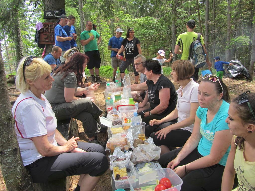 Pohod na Šteharnikov vrh