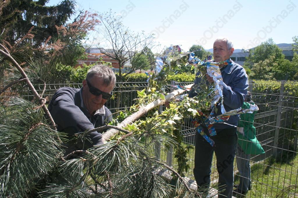 Izkušeni moški so delo z lahkoto prijeli v svoje roke.