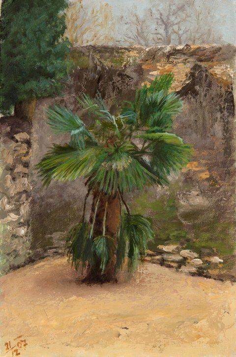 Milan Klemenčič, Schleglova palma v Šturjah,1907, olje na platno, Goriški muzej Kromberk