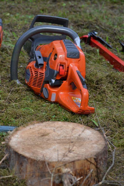 Usposabljanje na področju gozdarstva za varno delo v gozdu