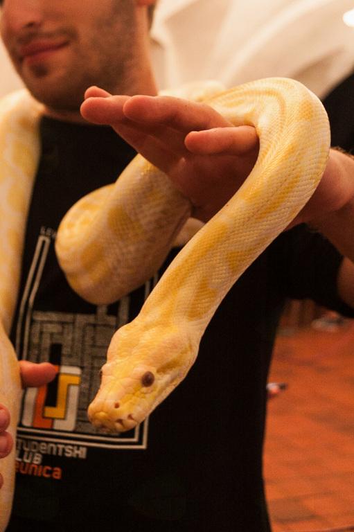 Razstava eksotičnih živali v Posavju doživela uspeh