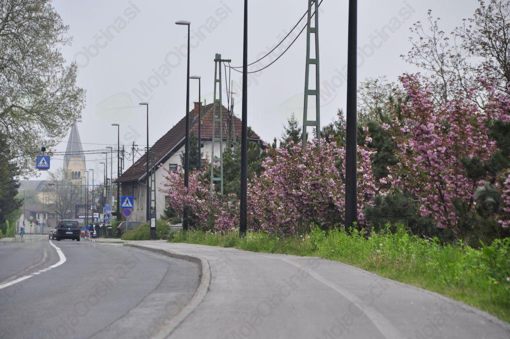 Napovednik dogodkov Črnuške pomladi 2014