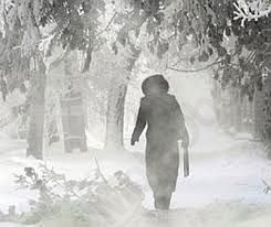 Zimske radosti naših otrok