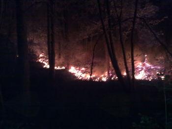Razglašena velika požarna ogroženost