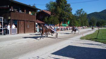 Kasači iz KD Krim na domači dirki dosegli odlične rezultate