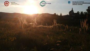 Študijski krožek Učenje v labirintu narave: Joga v naravi