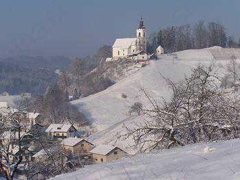 Obvestilo oškodovancem – pozeba in zapadli sneg na območju občine