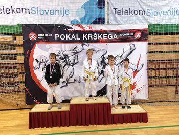 Mladi ippončki uspešni na 1. Pokalu Krškega v judu U12