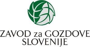 DAN ZEMLJE 2020: Gozd in podnebne spremembe