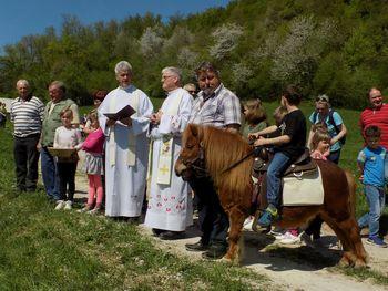 Blagoslov konj v Trnovcu