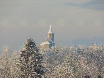 Snežno jutro