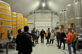 Strokovni ekskurziji v Brda in Collio ter Eisenberg DAC in Marof