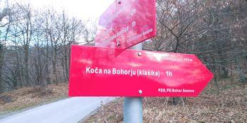 OŠ planinski izlet na Bohor