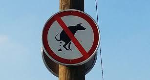 Pasji iztrebki so naravi škodljivi