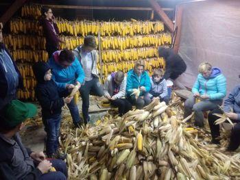 Obujanje starih kmečkih običajev Pr'  Petrc na Brišah