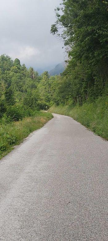 Košnja trave ob lokalnih cestah