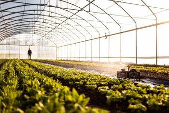 Kmetijski ponudniki v naši občini