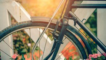 Barjanska kolesarska povezava: pojasnilo