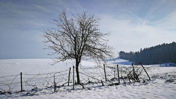 Osamljenost: kazen ali darilo?