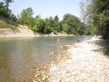Reka Savinja pri mostu v Griže v juliju 2021 primerna za kopanje
