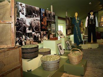 Ob kulturnem prazniku odprta vrata Savinove hiše in Ekomuzeja hmeljarstva in pivovarstva