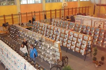 Ta vikend v Podgorju odprta razstava ptic