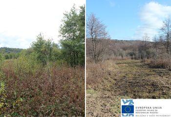 Obnova zemljišč na Planinskem polju