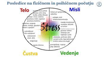 Čuječnost za obvladovanje stresa in izboljšanje zdravja - izkustveno predavanje: