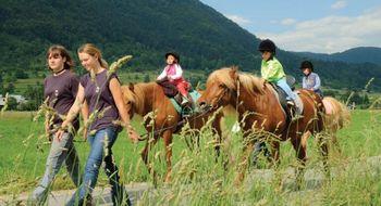 Potep s konji na Senožeta