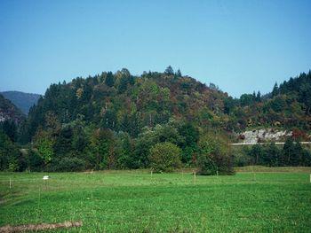 Ajdovski gradec – najstarejša bohinjska vas