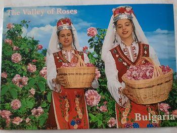 Festival vrtnic